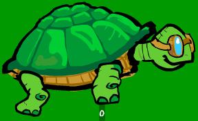 tartaruga1