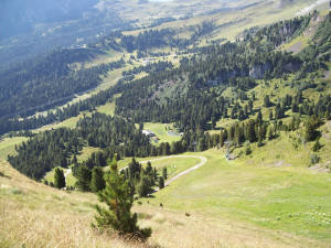 Vacanze in Trentino Alto Adige - foto 2